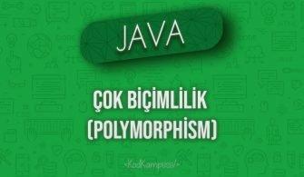 Java'da Çok Biçimlilik (Polymorphism)